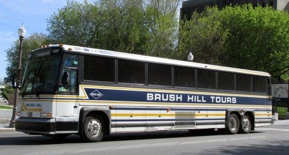brushhill.jpg