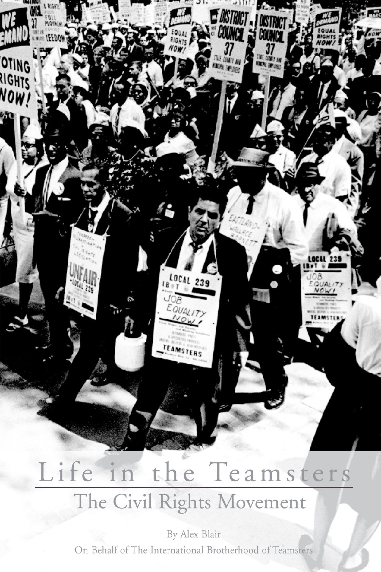 civil_rights_cover-e-book.jpg