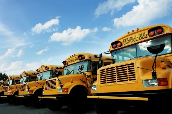 school_bus-line_of_buses.jpg
