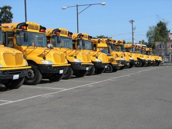 school_buses_in_a_row.jpg