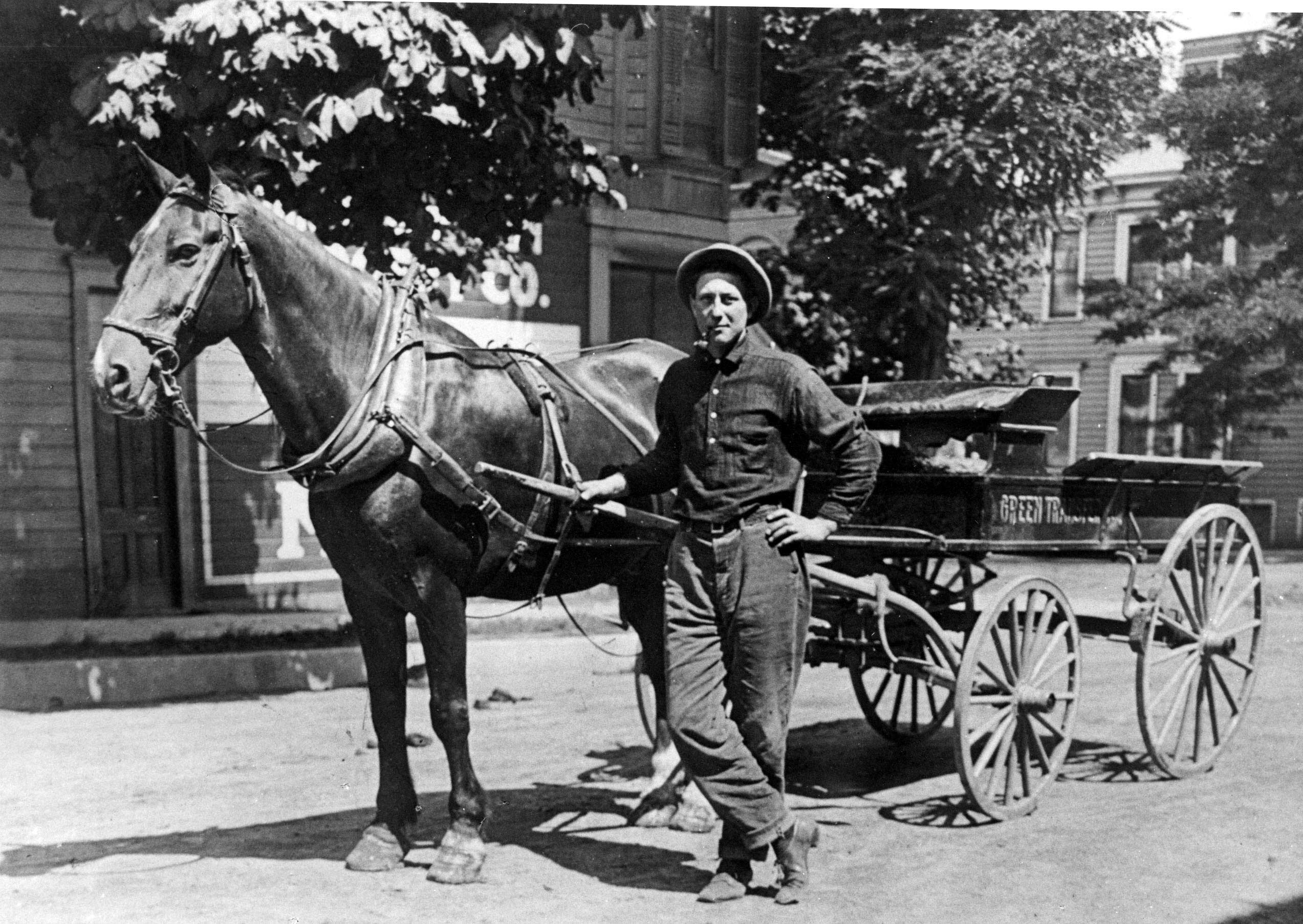 Teamster Early Days - Teamster with horse