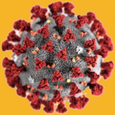 coronavirus_0