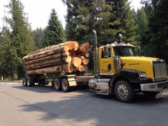 logging-trucks-western-star-4900sb-13135348